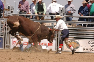 rowdy_barry_rodeo_bullfighter